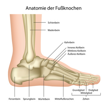 Schmerzen am Fuß